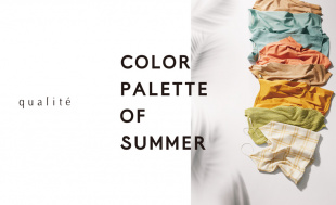 qualite Color palette of Summer